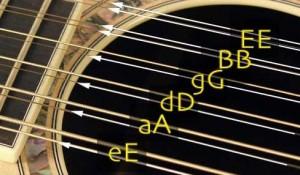 Twelve String Guitar